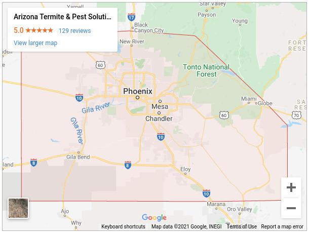 Arizona Termite & Pest Solutions