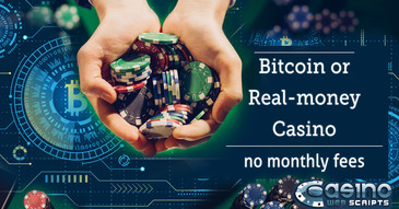 Taking advantage of the bitcoin rise with CasinoWebScripts casino solution