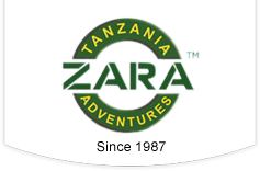 Zara Tours Unveils New and Newly Renovated Lodges in Tanzania