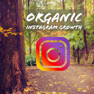 Organic Instagram Growth for Business - Best Practices