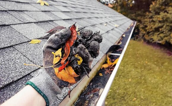 Southeast Gutter Cleaning